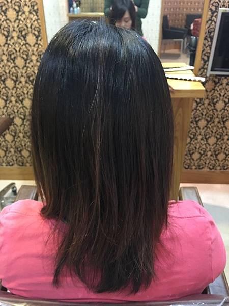 染髮前造型