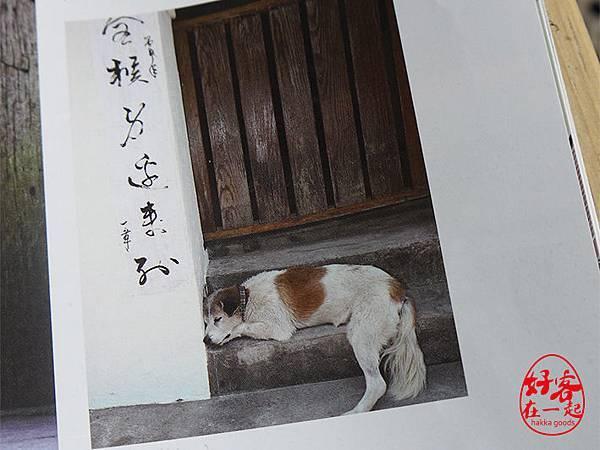 南庄老街私人秘境慢城好客在一起光華雜誌19.JPG