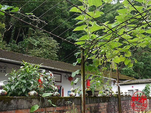 南庄老街私人秘境慢城好客在一起光華雜誌28.JPG