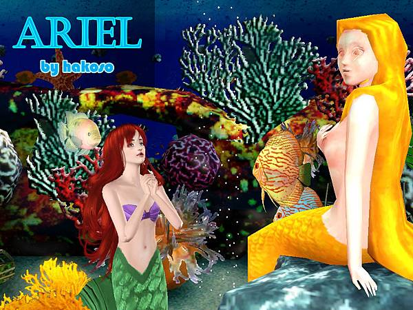 Ariel_06