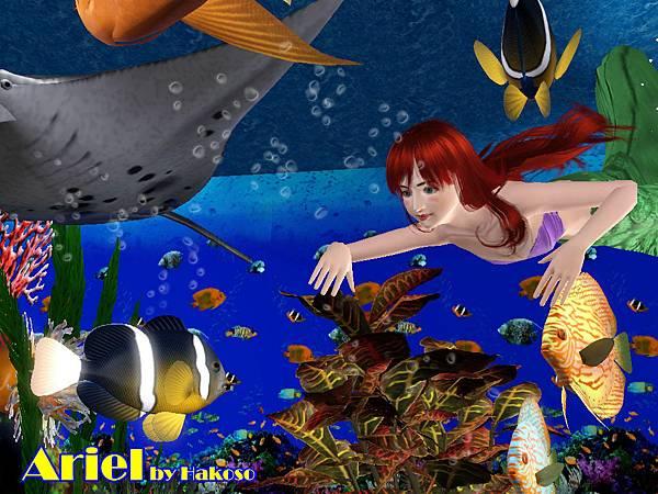 Ariel_10
