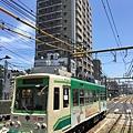 IMG_7567.JPG