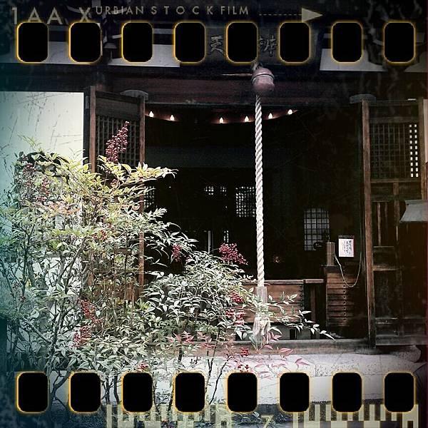 shot_1322971474942.jpg