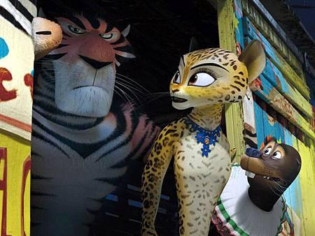 馬達加斯加06