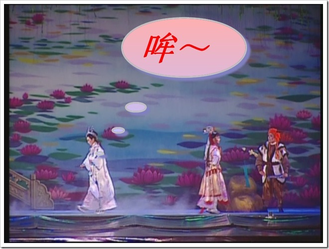 KMP-DVD[(127661)13-32-53]