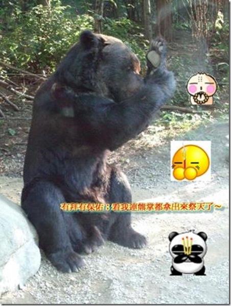 clip_image016[1]