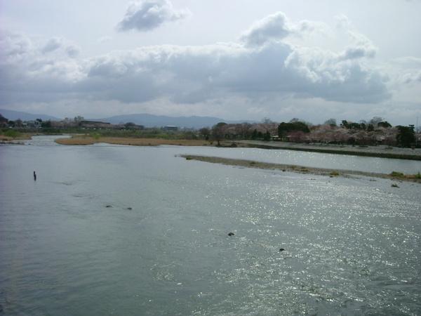 渡月橋.水上風光
