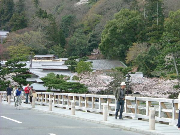 渡月橋.普通的水泥地橋
