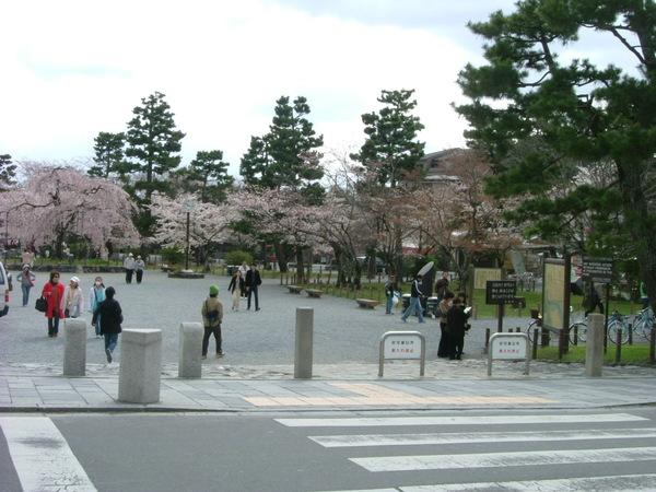 嵐山公園.位於渡月橋旁