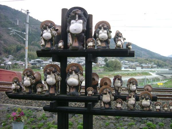 嵯峨野.靠站後可見的可愛狸貓