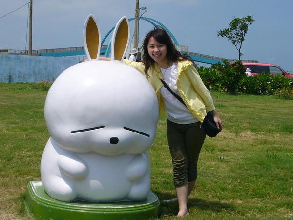 王功附近的賤兔...卡哇伊