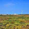 彰濱工業區發電風車