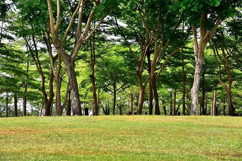 台南都會公園