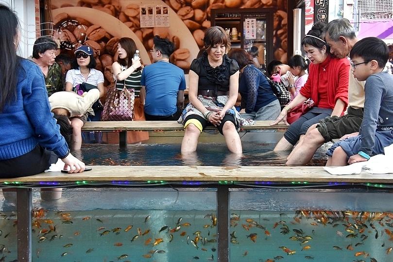 礁溪湯圍溝溫泉公園溫泉魚
