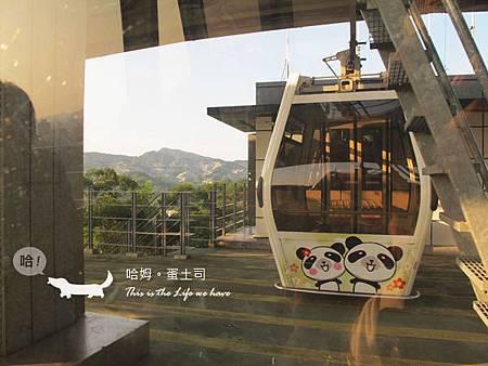 可愛的熊貓車廂