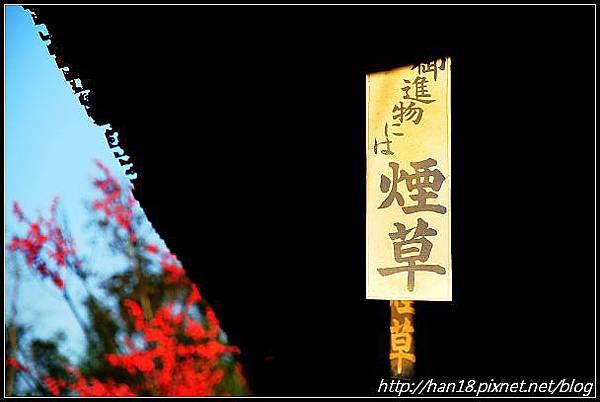 賽德克巴萊-林口霧社街 (85).jpg