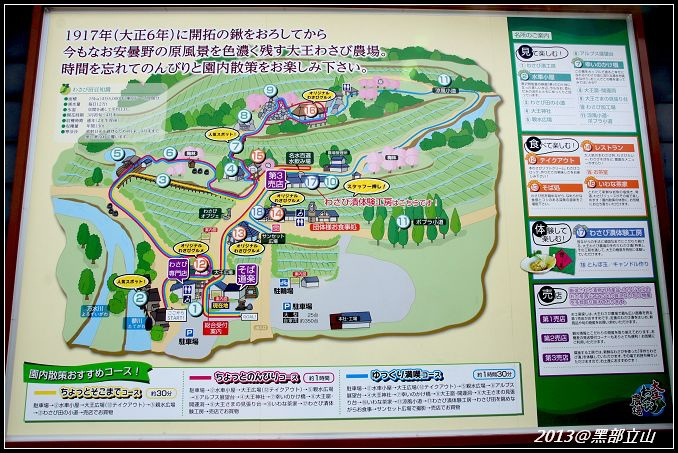 【2013黑部立山】Day3。大王山葵農場、上高地 (2).jpg