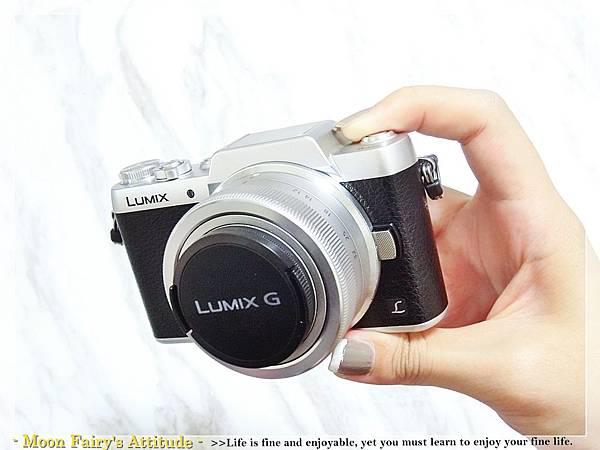 CIMG4981.JPG