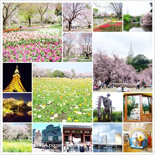 2013春櫻東京