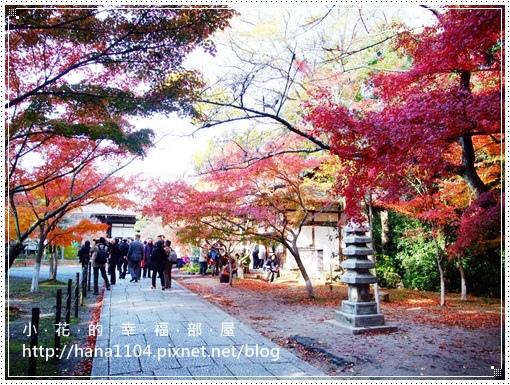 長岡京光明寺