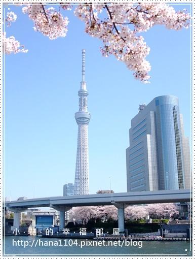 東京晴空塔&隅田川