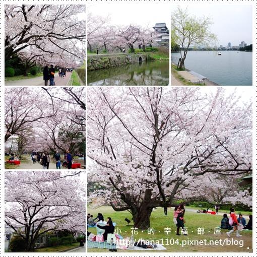 舞鶴公園&福岡城跡&大濠公園