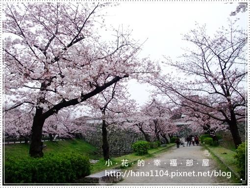 舞鶴公園&福岡城跡