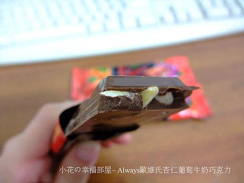 Always歐維氏杏仁葡萄牛奶巧克力