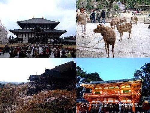 東大寺+清水寺+八坂神社