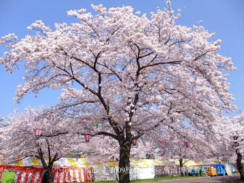 萬國博覽會紀念公園