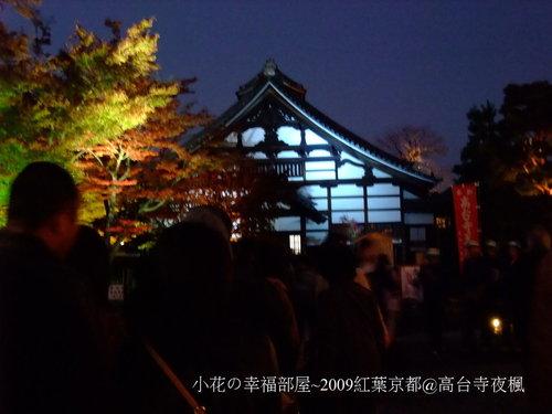 高台寺夜楓