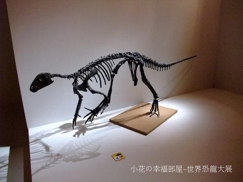 世界恐龍大展