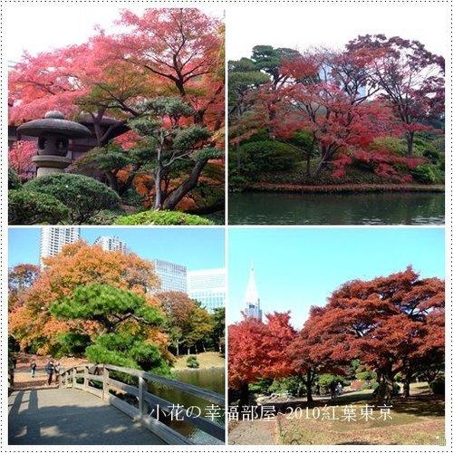 2010紅葉東京