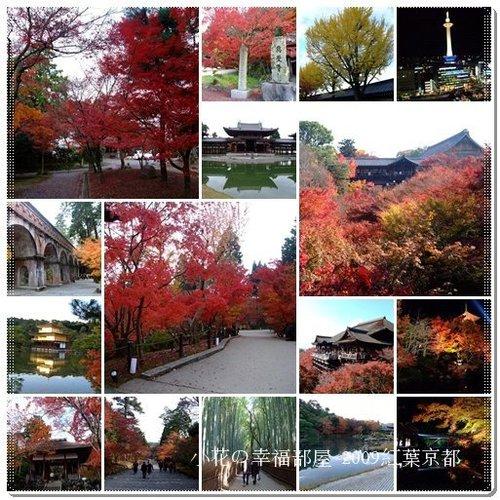 2009紅葉京都