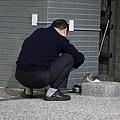 【TNR】貓貓們近況  006.jpg