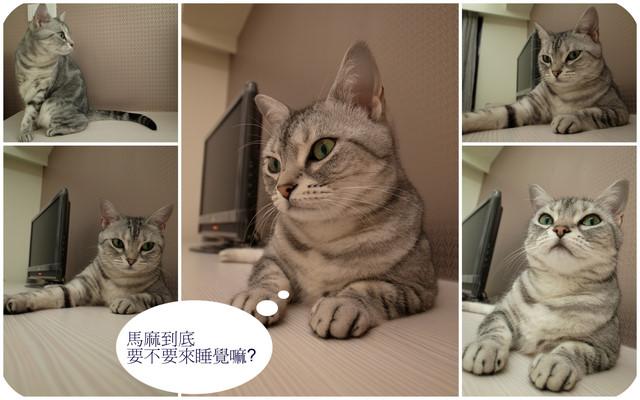 201100706房間冷氣吹.JPG