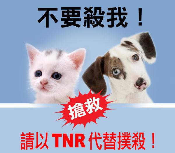 TNR2.jpg