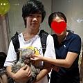 Catsle_貓守城堡(貓精品住宿)