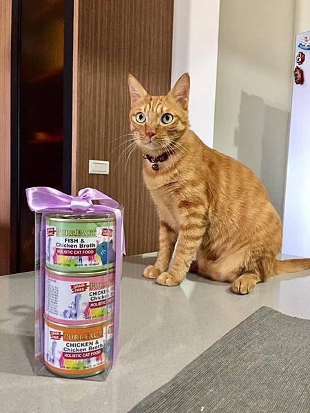 PURRFACT 波菲特貓用主食罐01