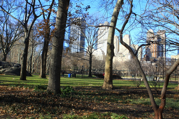 紐約中央公園