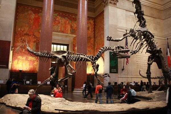 自然歷史博物館大廳