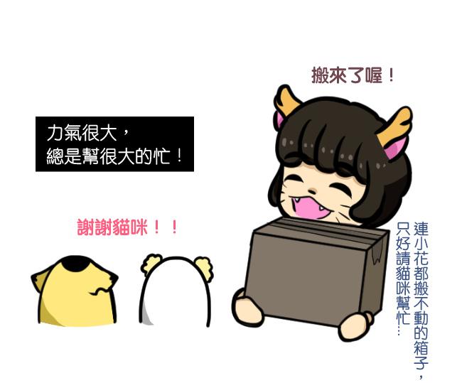 與笨貓相遇篇-生日快樂08