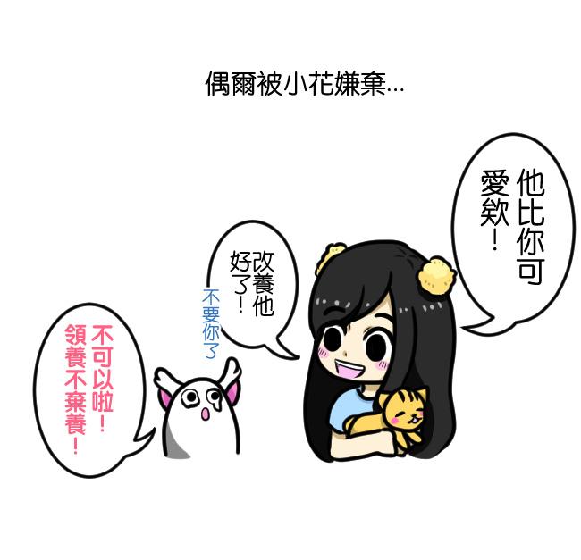與笨貓相遇篇-生日快樂06