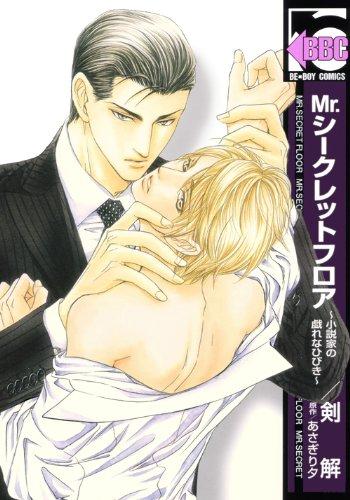 Mr.シークレットフロア~小説家の戯れなひびき~.jpg
