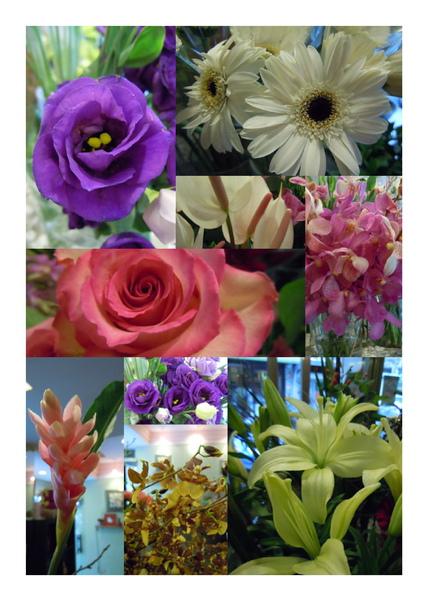 2010-10-07進花.jpg
