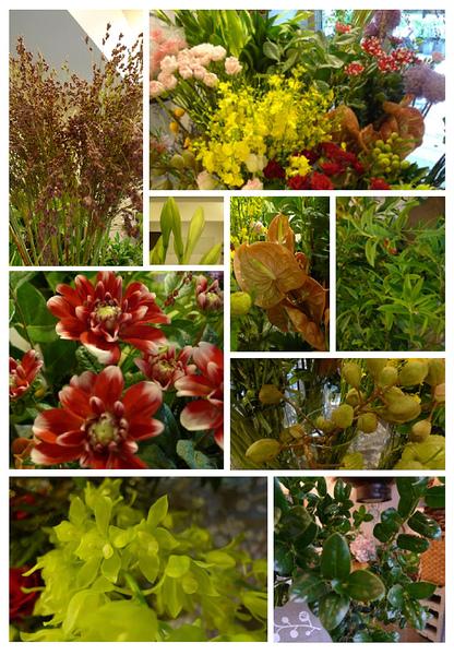 2010-06-28 進花拍攝.jpg