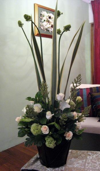 花踴子精緻盆花系列-展翅上騰