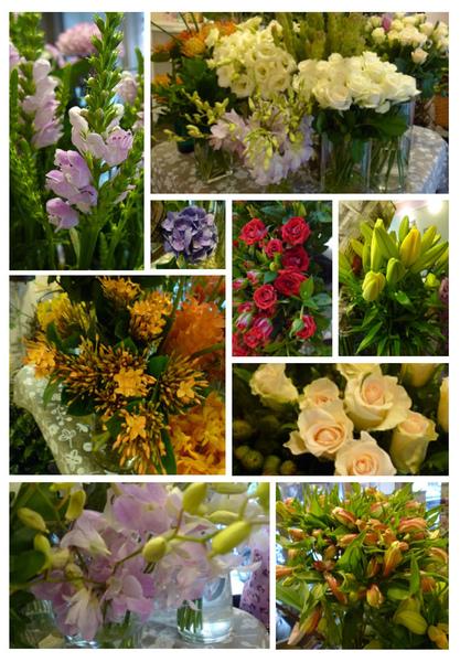 2010-08-25進花.jpg
