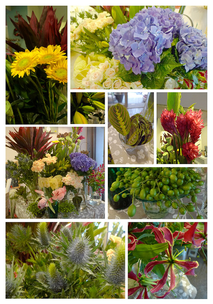 2010-06-02 進花拍攝.jpg