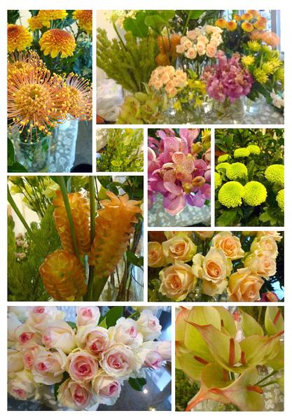 2010-08-11進花拍攝.jpg
